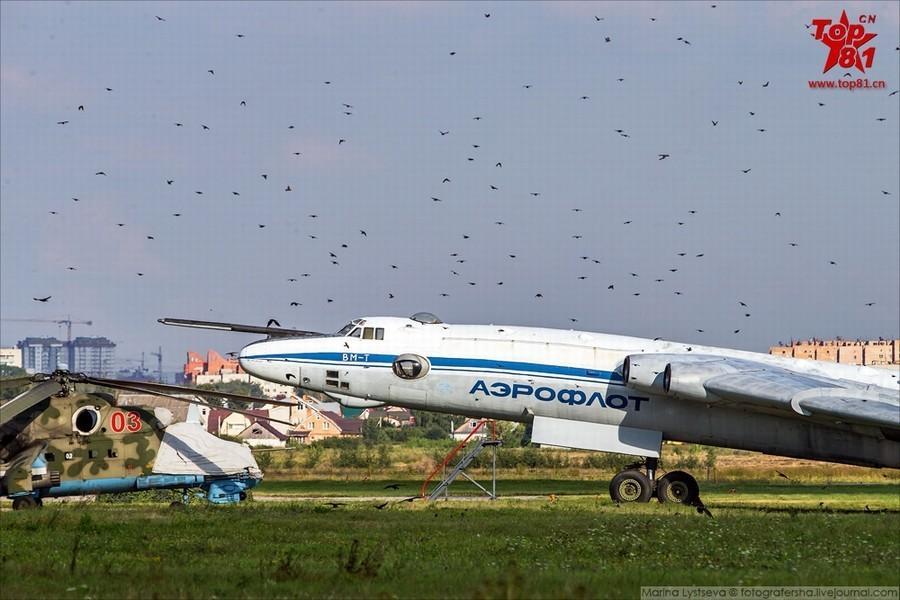 组图:俄军机场全是鸟战机照飞不误 - 海阔山遥 - .