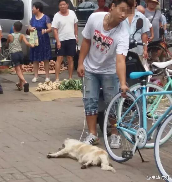 【图片新闻】男子为吃狗肉街上活活摔死小狗 遭群众暴打 - 耄耋顽童 - 耄耋顽童博客 欢迎光临指导