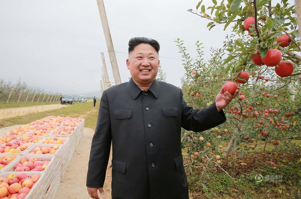 核试验结束后 金正恩视察果园笑容满面2016.9.19 - fpdlgswmx - fpdlgswmx的博客