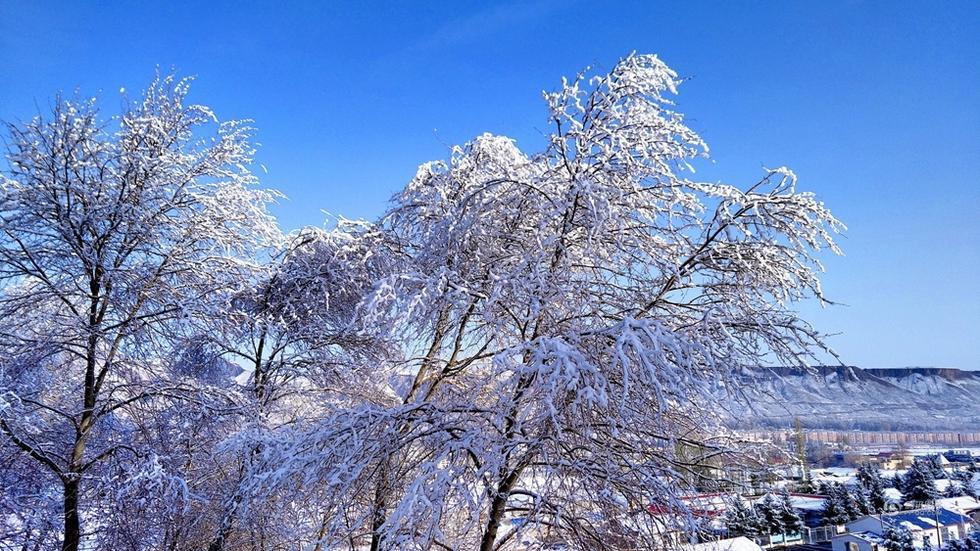 肃南裕固族自治县迎第一场雪 积雪厚度达6厘米 - 海阔山遥 - .
