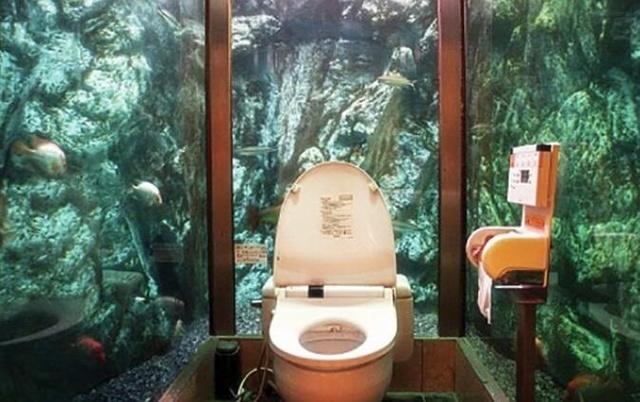 这些不一般的厕所你敢上吗?最后一个真心狠... - 海阔山遥 - .