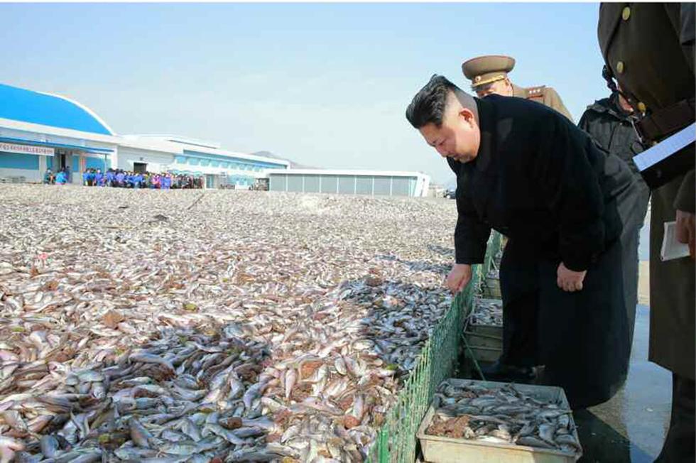 金正恩视察 看满地鲜鱼笑容灿烂 - syg435896545 - syg435896545的博客