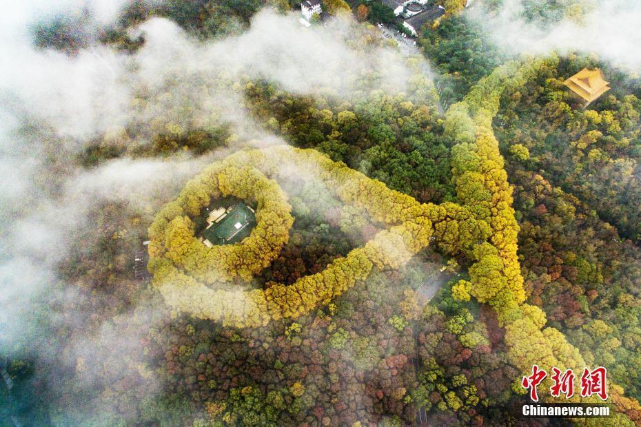"""俯瞰南京紫金山""""最美项链"""" - 海阔山遥 - ."""
