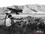 【中国人的一天】一本家庭相册里的时代变迁
