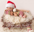 父母为新生婴儿拍圣诞写真