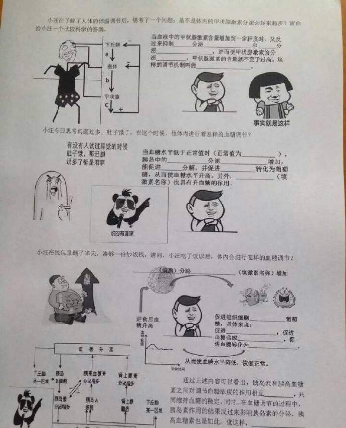 厉害了!高三老师自制表情包试卷火爆网络图片