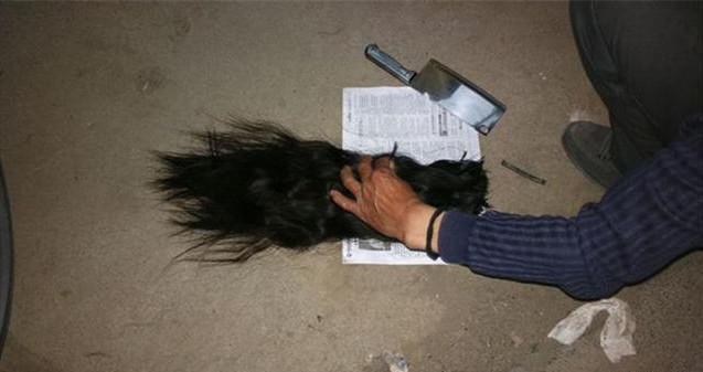 农村收来的长头发不止是做假发 而且卖的价格不低图片