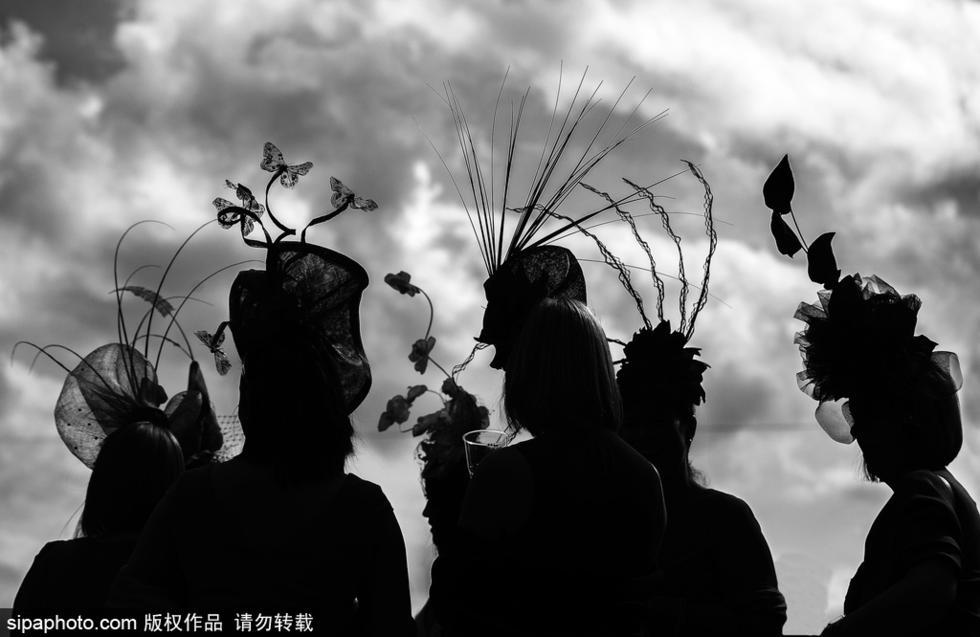剪影的艺术 明暗对比的摄影作品 - 海阔山遥 - .