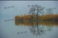 组图:武汉继续受雾霾袭击 朦胧景色似海市蜃楼