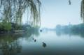 中国幸福感爆棚的6个小城市 生活压力小
