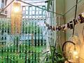 """厉害了!大学生用废品改造出""""梦幻花园"""""""
