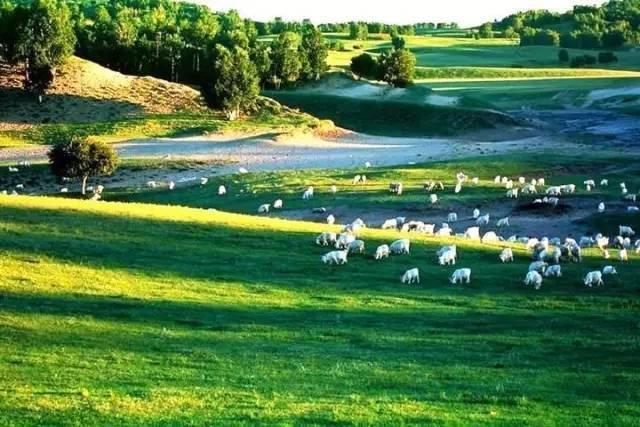 谦森岛庄园,武湖生态农业园,农耕年华,胜天农庄被评为全国农业旅游