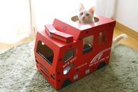 萌宠庄园:为了让猫开消防车,铲屎官费尽心思