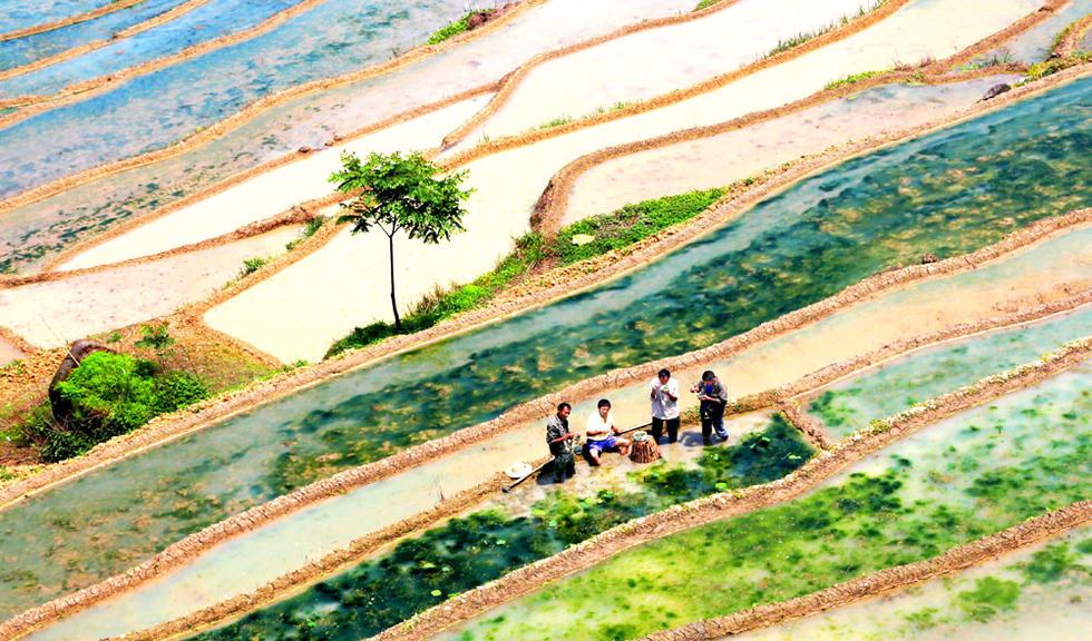 重庆:中国梦 劳动美
