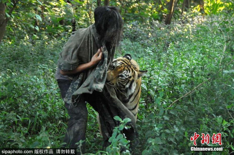 厉害了!一男子养老虎当宠物2017.5.23 - fpdlgswmx - fpdlgswmx的博客