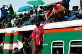 比春运还拥挤的迁徙场面你见过吗?