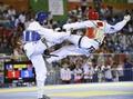 土耳其男子跆拳道夺冠