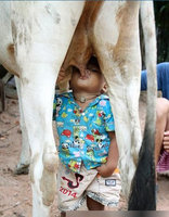 高钙奶什么时候喝最好
