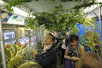 """美国提倡绿色环保 造""""绿色移动花园"""""""