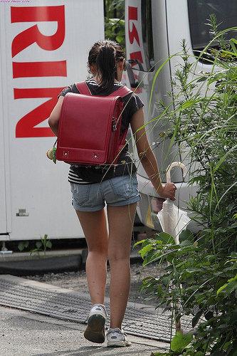 日本小学女生图片