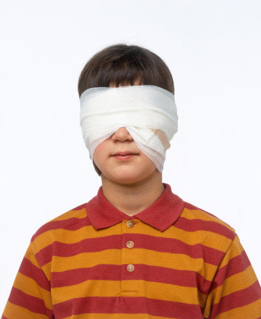 响眼睛,导致生眼疮或眼疾.如树枝没有直伸向窗户,窗旁的树是可图片