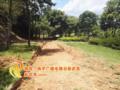 南平玉屏公园有新变化 新建三条步道简直太赞了