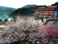 福州发布秋冬旅游特色线路 国庆旅游来这里