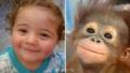 宝宝和小动物的撞脸照超暖超有爱