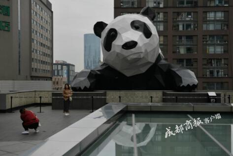 成都ifs大熊猫创作者辞世 确切死因未知(图)