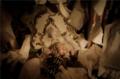 《死亡爱丽丝》睡美人