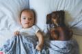 迷你腊肠犬陪伴宝宝成长画面温馨