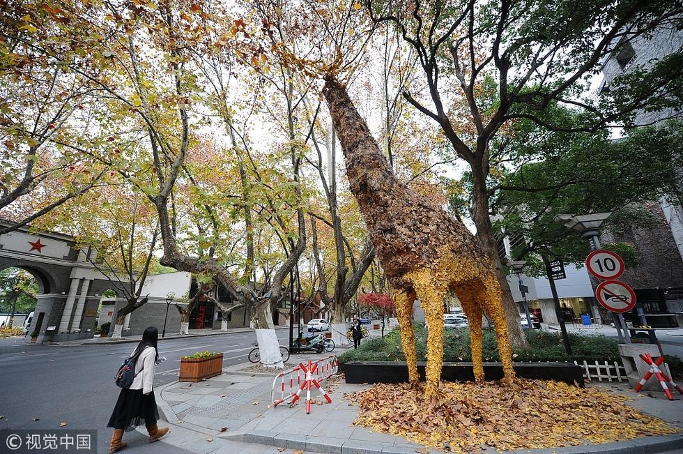 西湖边出现一只落叶拼凑的长颈鹿_大浙_腾讯网图片