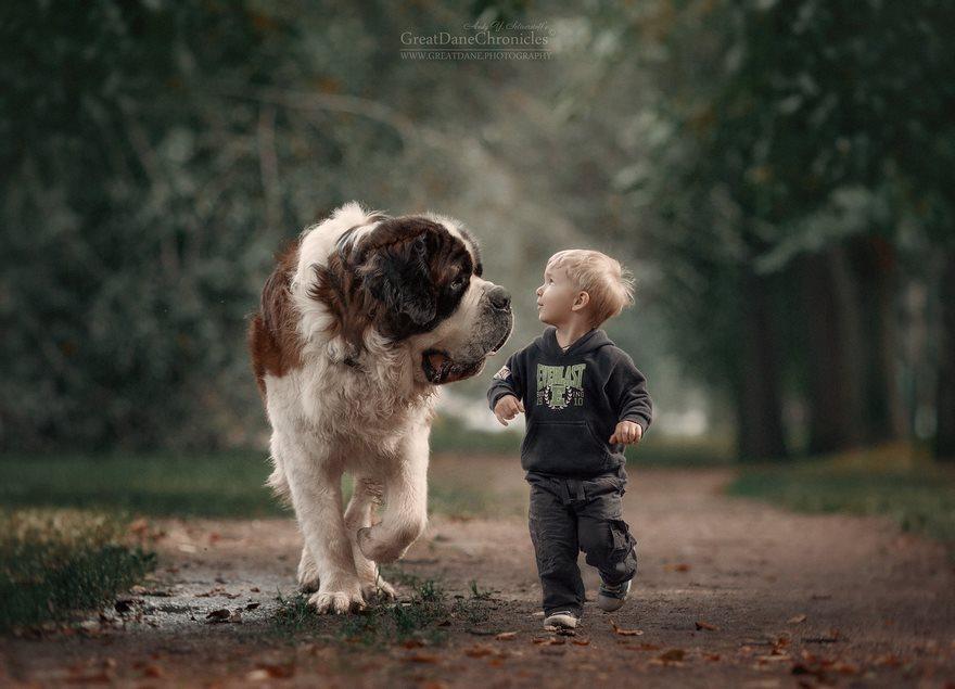 小朋友和巨型犬