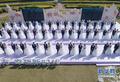 百名城市建设者厦门举行集体婚礼 不少人婚期一拖再拖