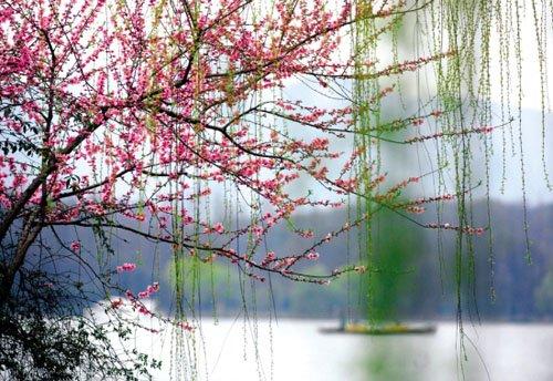 中国情侣必去的国内十大浪漫圣地   - 雪地梅 - 小鸟与蓝天