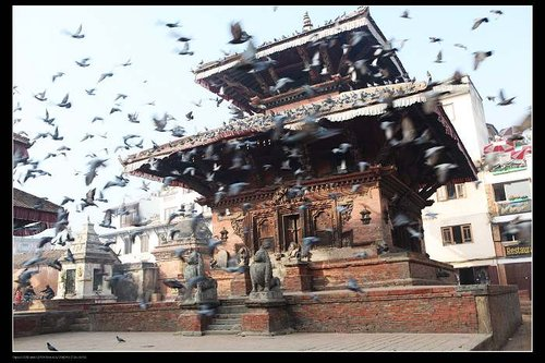 去尼泊尔你必须要知道的