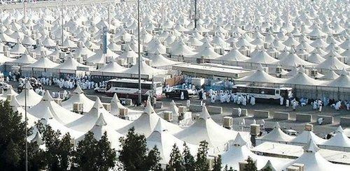 麦加帐篷来到世博园区 白天遮阳晚上散热(图)