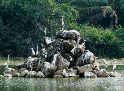 走进海南 走进中国完美热带雨林