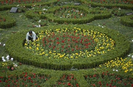逾6000万鲜花将装点上海 各景观均有主题(图)