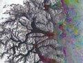 高清:外媒发布地球壮观的冰川太空照片