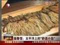 视频:瑙鲁馆竹编手工艺 磷酸盐矿脱水做肥料
