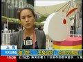 视频:玉兔宫灯点亮世博 创意设计得国际大奖
