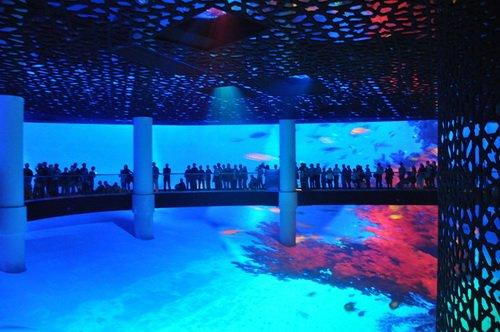 沙特馆:三维影院给参观者视觉的震撼(组图)