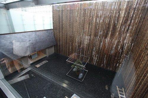 日本顶级料理搬进世博 每日限量只接待60人