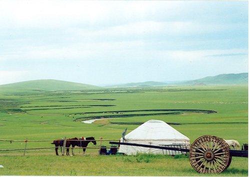 广袤无边的草原 绿色装点的世界