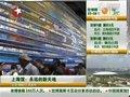 视频:上海馆看市民照片 环幕影片展多元文化