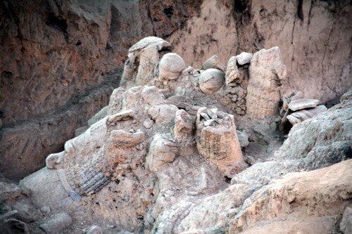 西安兵马俑考古学家获西班牙最高奖项(图)