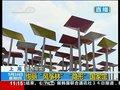 视频:风筝林掩映墨西哥馆 顶部装太阳能电板