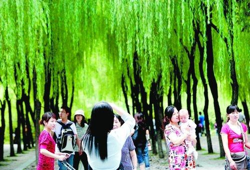 小长假最后一天 杭州游客在西子湖畔留影