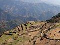 高清:滑翔伞运动员拍摄喜马拉雅山鸟瞰图片